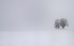 hill, winter, trees, branch, simple, snow