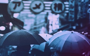 filter, Japanese umbrella, rain, umbrella, photography