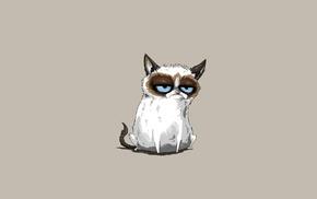 minimalism, cat, Grumpy Cat