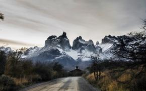 Chile, mountain, Torres del Paine, shrubs, snowy peak, trees