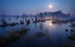 water, landscape, lake, blue, trees, moonlight
