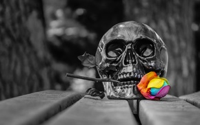 spooky, skull, selective coloring, death, Gothic