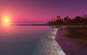 water, sunlight, evening, beach, palm trees