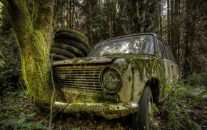 leaves, branch, old car, wreck, trees, nature