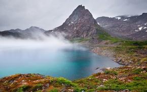 Chile, mountain, mist, island, landscape, shrubs