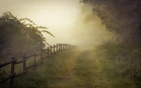 landscape, path, nature, fence, mist, grass