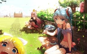 Megurine Luka, anime, Vocaloid, IA Vocaloid, anime girls, Hatsune Miku