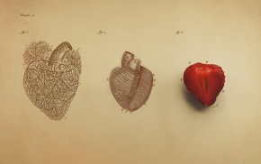 digital art, hearts, simple background, fruit, strawberries, biology