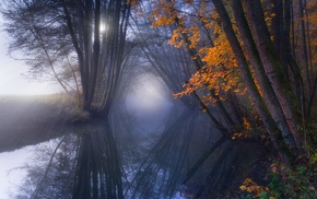 water, river, trees, sun rays, mist, reflection