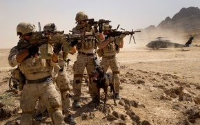 animals, military, weapon, desert, machine gun, hill