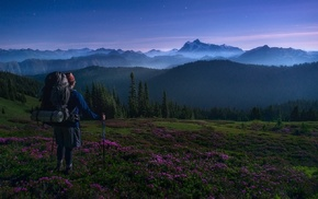 Washington state, landscape, forest, sunrise, backpacks, hiking
