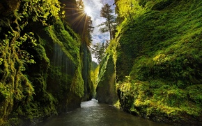 landscape, sunlight, Iceland, canyon, green, valley
