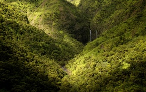 spring, landscape, waterfall, Kauai, nature, forest