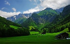 green, cabin, Alps, forest, clouds, spring