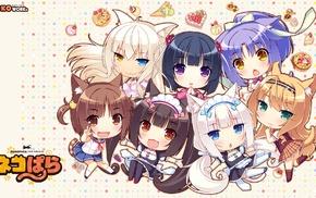 long hair, Maple character, Chocolat Neko Para, Neko Works, tail, Neko Para