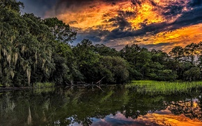 South Carolina, summer, nature, forest, sunset, clouds