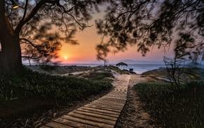Greece, sand, nature, island, path, shrubs