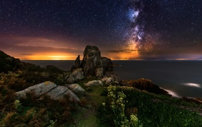 stars, nature, sunrise, Milky Way, wildflowers, coast
