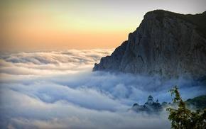 landscape, cliff, trees, mist, spring, church