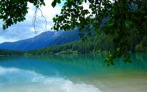 Italy, forest, Tyrol, green, nature, summer