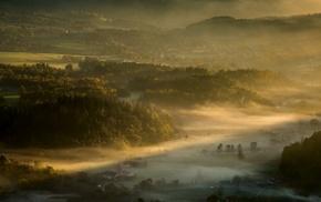field, trees, sunrise, village, forest, nature