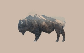 mountain, nature, Double Exposure, bison, animals
