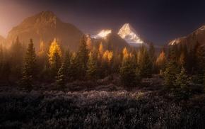 sunrise, mountain, fall, snowy peak, landscape, mist