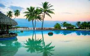 summer, palm trees, water, landscape, resort, swimming pool