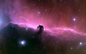 Horsehead Nebula, stars, space