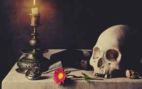 books, skull, flowers, table, candles
