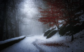 hill, landscape, France, white, red, leaves