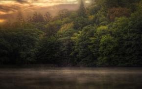 lake, mist, trees, landscape, sky, clouds