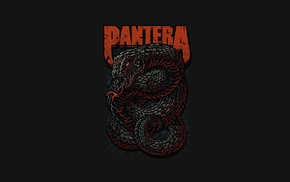 thrash metal, Pantera, music, heavy metal, snake