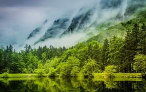 forest, lake, nature, Germany, landscape, trees