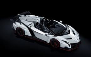 vehicle, luxury cars, Lamborghini, Lamborghini Veneno Roadster, white cars, car