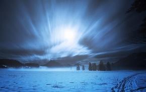 night, snow, trees, landscape, long exposure, path