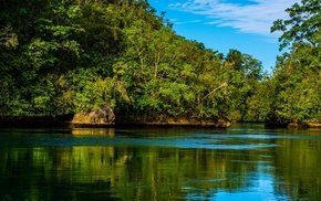 green, landscape, forest, island, water, sea