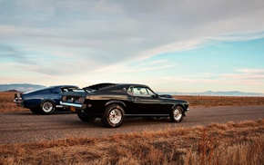 cars, Ford Mustang, Shelby GT500