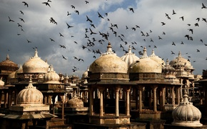 India, architecture, city, dome, birds