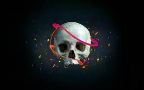 artwork, skull