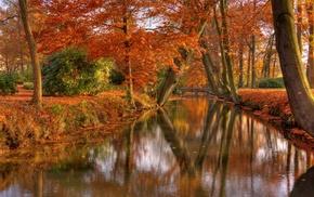 fall, reflection, shrubs, bridge, leaves, park