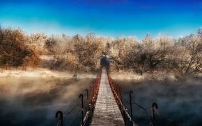 winter, trees, path, walkway, mist, landscape