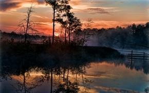 Florida, swamp, trees, clouds, mist, sunrise