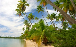 white, sand, palm trees, clouds, beach, French Polynesia
