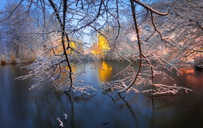 snow, branch, trees, water, New York City, park