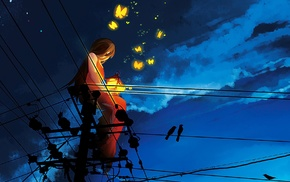 butterfly, sunset, silhouette, original characters, birds, power lines