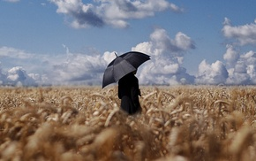wheat, clouds, field, umbrella, sky