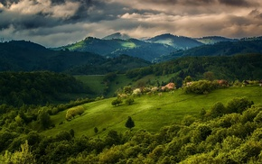 clouds, spring, green, forest, trees, landscape