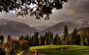 animals, mountain, fall, nature, grass, sunset