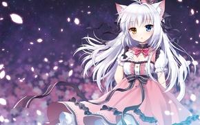 animal ears, anime girls, silver hair, original characters, heterochromia, long hair